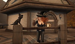 Autumn Witch (Saffron Foxclaw) Tags: secondlife secondlifeblog secondlifefashion secondliferoleplay secondlifemischiefmanaged witch autumn fall halloween cat tableauvivant thearcade justbecause uber fameshed reign hextraordinary whatnext trompeloeil jian