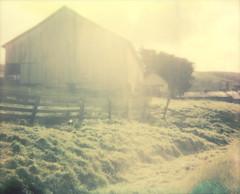 barn (lawatt) Tags: barn zanardi pasture sunlight westmarin film instant polaroid spectra roidweek2018