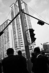 C0017047 (quadobtus) Tags: street candid provoke hysteric snap city ricoh gr daido moriyama 흑백 개 애완동물