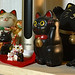 Cats on the Shelf