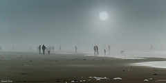 Anonymat/Anonymity (laurentcornu) Tags: anonymity anonymat atlantique france nikond800 soulacsurmer beach laurentcornu misty