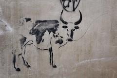 IMG_7186 rue Baudadoni Arles (meuh1246) Tags: streetart 13 animaux arles ruebaudadoni vache