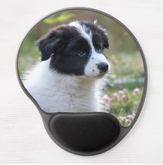 Adorable Puppy Mouse Pad (devonsunshine) Tags: dogs bordercollie collie pets mousemat mousepad paws doglover bordercolliegifts giftideas puppy puppies cutedog flowers photo