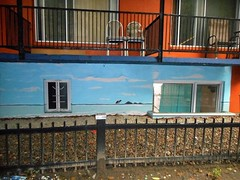 The Vacation I Can Afford (navejo) Tags: montreal quebec canada ghetto mcgill painting mural wall apartment building fence balcony