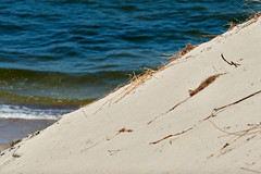 Baltiysk_2011_06_151 (Бесплатный фотобанк) Tags: balticsea baltiysk coast kaliningradregion landscape nature russia vistulaspit балтийск балтийскаякоса калининградскаяобласть балтийскоеморе берег пейзаж природа россия