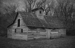 Small Barn (Dave Linscheid) Tags: rural farm country agriculture architecture texture textured november2018 decay abandoned watonwancounty mn minnesota blackandwhite