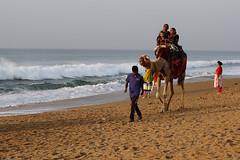 Happiness. (draskd) Tags: puri puribeach beach seabeach odisha orissa tourist camel camelride sonyhx9v sea india 260 30918 explore