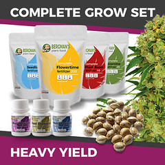 complete-grow-set-heavyyield_large (Watcher1999) Tags: marijuana growing seeds buds cannabis big bud medical strain plant weed weeds smoking power ganja legalize it