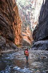 Utah_2018_set2_ (60 of 73) (jasinrodriguez) Tags: zion trekking family narrows subway zionnationalpark nationalparks outdoors