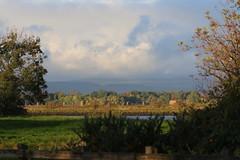 Morning Sky (themadbirdlady) Tags: riverforth southalloans8790 morning light