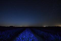 Las estrellas sobre los campos de lavanda (Hachimaki123) Tags: paisaje landscape brihuega lavanda lavender