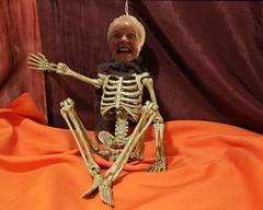 Telling a Skelepun Takes No Guts (SolanoSnapper) Tags: showmeyourbones werehere wah granny 6ws skeleton bones