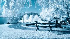 Blue Infrared - 6058 (ΨᗩSᗰIᘉᗴ HᗴᘉS +23 000 000 thx) Tags: blue ir infrared infrarouge pairidaiza hensyasmine namur belgium europa aaa namuroise look photo friends be wow yasminehens interest intersting eu fr greatphotographers lanamuroise