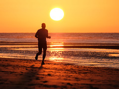 The sun is the centre of attention Olivier - LR 4-3 (Drummerdelight) Tags: intothesun de haan shillouette sunlightset sunlight seaside beach jogging runner sport sunset sunsetting crops