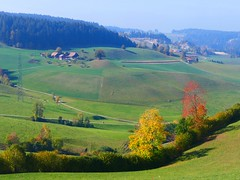 Oberthal - Arni Herbst 2018 (Martinus VI) Tags: emmental canton de kanton bern berne berna berner bernese schweiz suisse suiza switzerland svizzera swiss oberthal arni herbst autumn fall automne otoño autunno