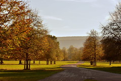 Nice Day For A Walk (mmmtog) Tags: autumn nature landscape leaves land colour trees green grass sky path