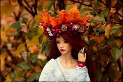 Golden Leaves (noir_saint_lilith) Tags: dollphotography doll dollmore dollportrait zaollluv zaoll bjd boho autumn samhain