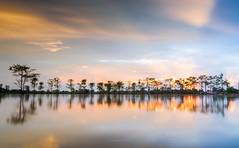 Sunrise (@CuongDo) Tags: blue yellow sundown sunrise longexposure long tree trees reflect reflections clouds cloud sony sonya7mark2 ilcea7m2 lenskit kit countryside water sky bluesky ray