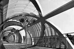 El puente (Osruha) Tags: puentearganzuela arganzuela madridrío madrid españa espanya spain puente pont bridge pasarela pasarella gateway arquitectura architecture blancoynegro blancinegre blackandwhite bw bn bnw nikon nikonistas nikond750 d750 paseo passeig walks