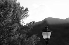 Fanal, Son, Pallars Sobirà, Catalunya. (heraldeixample) Tags: heraldeixample bcn son pallars àneu pirineu pirineo pyrenees spain espanya españa spanien catalunya catalonia cataluña catalogne catalogna fanal farol light ngc albertdelahoz