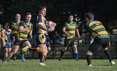 Rugby (120) (Malcolm Bull) Tags: include rugby union shoreham rfc midhurst buckingham park 20180929rugby0120edited1web