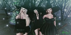 The Power Of Three (DiabhalsAingeal ♥ DevilsAngel) Tags: secondlife secondlifephotography sl avatar witch witches salem salemevent witchhat truth maitreya catwa avenge dirtyprincess decoy psychobarbie cove magic magick cauldron skeleton woods halloween spooky witchcraft charmed pentacle swallow