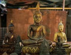 Buddhism (dlerps) Tags: bkk bangkok city daniellerps lerps sony sonyalpha sonyalpha99ii tha thai thailand urban lerpsphotography metropolitan buddha sittingbuddha buddhism buddhist religion statue market chatuchak weekendmarket chatuchakmarket gold golden carlzeiss carlzeissplanar50mmf14ssm