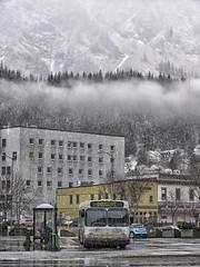 Juneau Rain Capital City Transit 34 (Gillfoto) Tags: capitalcitytransit juneau alaska bus newflyer