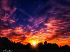 Dream a little dream! (Edale614) Tags: dream sunset sunsetsaroundtheworld sky columbus ohio naturephotography naturelovers nature art photography photo photooftheday picoftheday pic wanderlust aroundtheworld earl614
