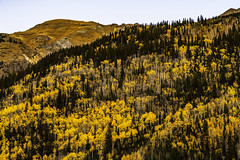 Colorado_fall_2018_3