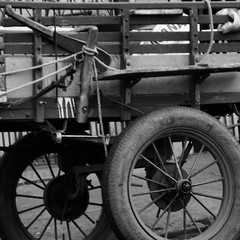 DSCF5711 (O KDUKO) Tags: sonyilce3000 carros araraquara blackandwhite blackandwhitephotography pictureoftheday blackandwhitephoto photography bnwcaptures monochrome monochromatic bw bwstyles artgallery visualart bwphotooftheday photoshoot bwstyleoftheday aesthetics streetphotography arts