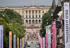 PALAZZO REALE OSLO (ADRIANO ART FOR PASSION) Tags: norvegia norway norge nikon nikond90 palazzoreale panorama 18200 200mm edificio palazzo royalpalace alberi