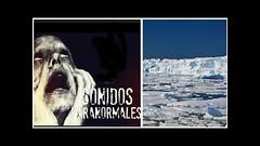 ¿Señales del más allá? Captan terrorífico sonido en la Antártida (VIDEO) (HUNI GAMING) Tags: ¿señales del más allá captan terrorífico sonido en la antártida video