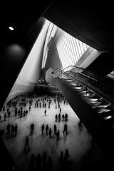 New YorkBW0430 (schulzharri) Tags: new york city usa stadt black white schwarz weis monochrome art kunst architektur personen linien fenster symmetrie