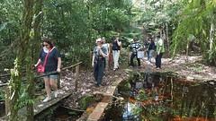 Slow Tour Brasil Roteiro Igrejinha RS (60) (slowtourbrasil) Tags: sustentabilidade passeios natureza roteiros experiência slow tour brasil nature