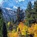 High Sierra Autumn, Bishop Creek Canyon, CA 10-18
