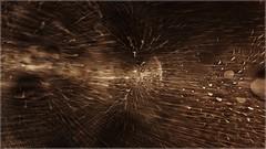 Rencontre la Soupe Cosmique Primordiale ([JBR]) Tags: flou cosmia cosmos blur mouvement movimiento movement noir negro black planete planet planeta star etoile estrella étoilefilante bulle bubble rond cercle circulo macro closeup cosmique jbrphotography jbrphoto 55 555 2018