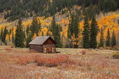 Ashcroft Ghost Town - Colorado (russ david) Tags: castle forks city ashcroft ghost town co colorado chloride mining autumn aspen trees landscape cabin october 2018