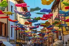 Invasione di farfalle multicolori a Pietrasanta (danilocolombo69) Tags: farfalle multicolori cielo danilocolombo69 danilocolombo nikonclubit pietrasanta eu excapture