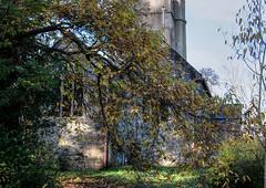 Cockington Church (Ray. Hines) Tags: pentaxk5ii smcpentaxda18135mmf3556edalifdcwr cockingtonvillage torbay devon autumn trees cockingtonchurch
