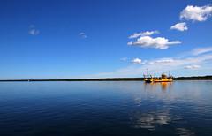 2018-08-05 (Giåm) Tags: fårösund östersjön baltic balticsea baltique merbaltique ostsee østersøen gotland sverige suede sweden schweden giåm guillaumebavière