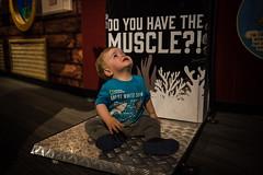 Will (17 months old) at Ripley's Aquarium (Katherine Ridgley) Tags: toronto torontotoddler toddler toddlerboy toddlerfashion cutetoddler ripleysaquarium ripleys ripleysaquariumofcanada aquarium child kid cutekid cute