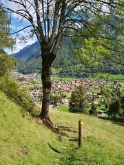 Wilderswil scenes 108 (SierraSunrise) Tags: switzerland wilderswil europe path trail