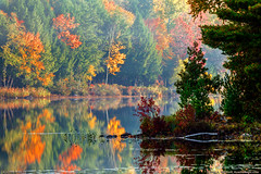 Autumn Season in Maine (Greg from Maine) Tags: autumn fall fallseason autumnseason foliage maine landscape morning morninglight lake pond reflection nature newengland echolake pufferspond penobscot penobscotcounty dexter dextermaine mainehighlands seasons