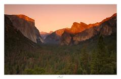 Yosemite Glow (Max Angelsburger) Tags: vereinigtestaatenvonamerika unitedstatesofamerica usa visittheusa us westcoast california yosemite september 2018 national park fir elcapitan roadtrip tunnelview wawonaroad bigoakflatroad alpine glow cloudsrest halfdome sentinelrock sentineldome cathedralrocks mariposa