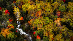 color (MakiEni777) Tags: autumn fall waterfall river nature forest season hokkaido japan tree drone
