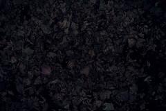 something like soil (N.sino) Tags: m9 summilux50mm leaves fallenleaves soil earth 落ち葉 土 点描 駒沢公園