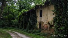 Forêt de Fabas (Ivan van Nek) Tags: forêtdefabas fabas hautegaronne france nikon nikond7200 d7200 frankrijk frankreich ruraldecay decay abandoned occitanie midipyrénées forestroad woods bos