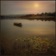 Warm evening on the river (Tarusa) (odinvadim) Tags: iphoneart landscape iphoneonly iphonex iphoneography specialist mytravelgram autumn sunset painterlymobileart iphone snapseed tarusa evening travel artist textured textures river