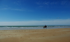 plage de Sauveterre - FRANCE (manguybruno) Tags: water paysage landscape mer sea océan plage beack vendée cheval